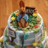 Outdoor Hobbies Cake